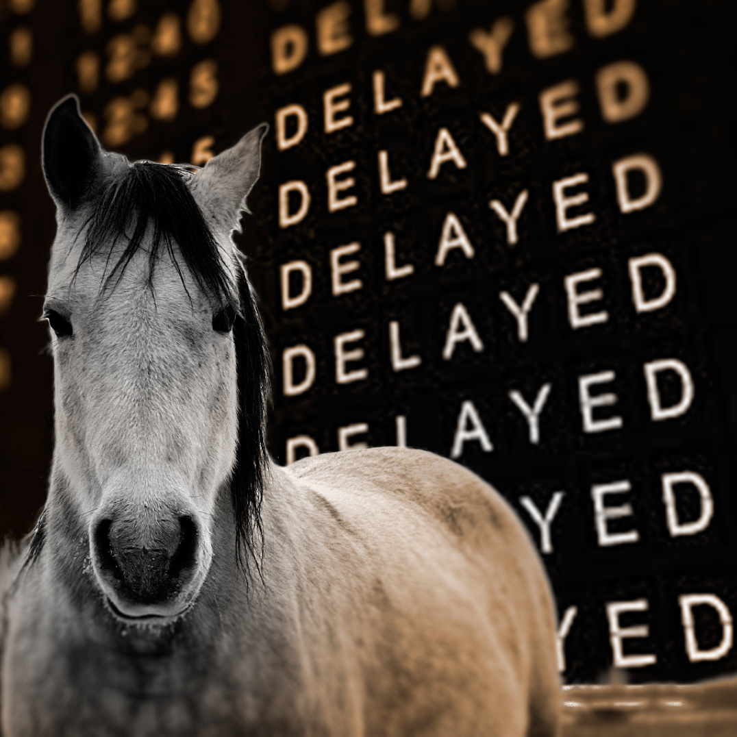 Delayed-horse